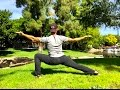 Top 10 Kung Fu COMBAT STANCES