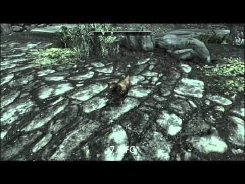 21 Things To Do When Youre Bored In Skyrim