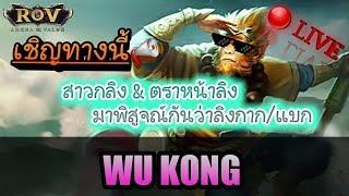 Rov-Wukongกากจิงๆเหรอเล่นยากน๊าาพาไต่แร๊งเวลา10.00-13.00นาnimo tv ได้ดาวกัลเยอะเลย