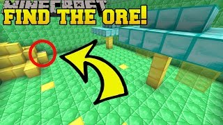Minecraft: FIND THE ORE!!! - Custom Map
