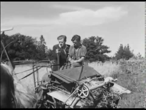 Med kunskap och redskap (1946, SoL-film) (Visad: 9ggr, Betyg: , Antal kommentarer: 0st)