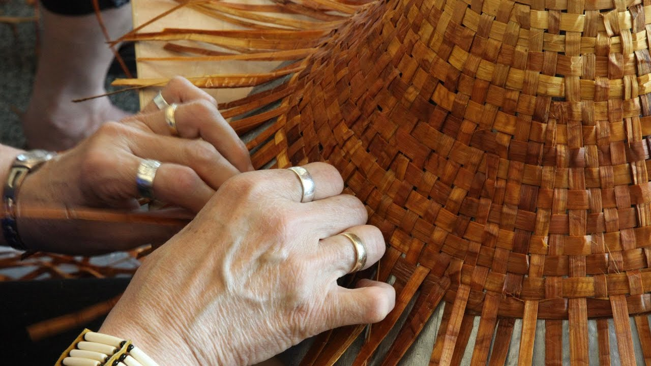 How To Weave A Cedar Basket : Story of cedar hat weaving bark pulling cowichan