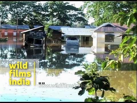 Flood-affected areas of Assam