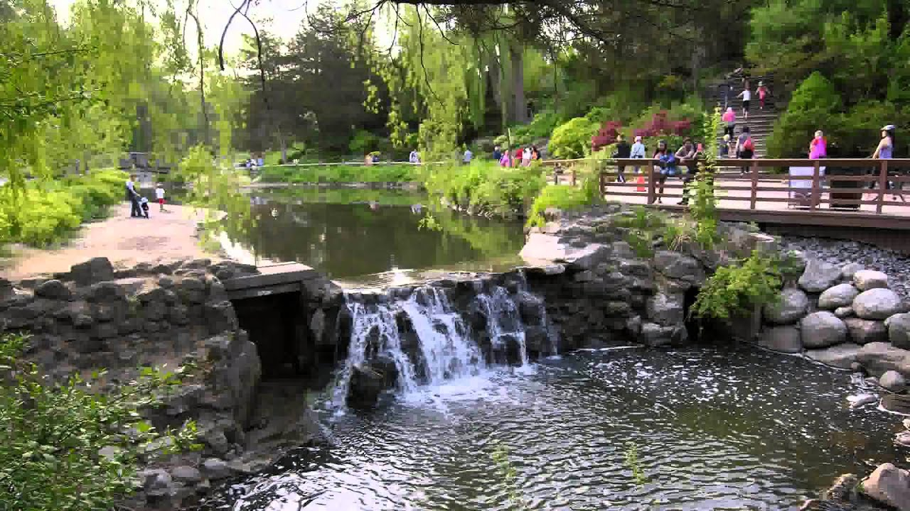Edwards Gardens Baby Enjoying At Edwards Gardens Toronto Youtube