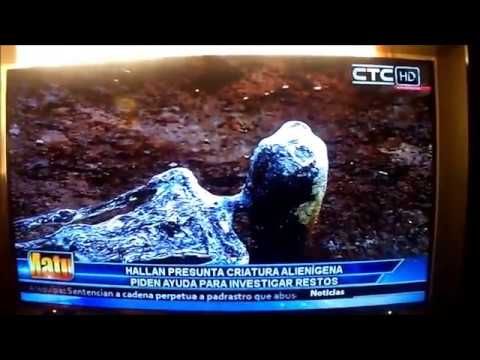 NEWS REPORT - Alien found in Peru - In spanish (Skull peruvian desert)