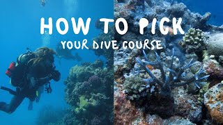 How Much To Pay for a Dive Course? | Tips for New Scuba Divers