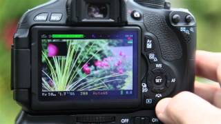 Canon T3i 600D best movie focus effect using magic lantern