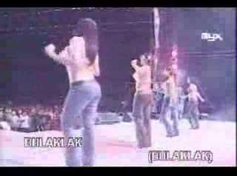 Viva Hot Babes Concert video