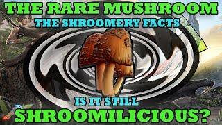Ark Survival Evolved: The Rare Mushroom Can We Still Use Them?