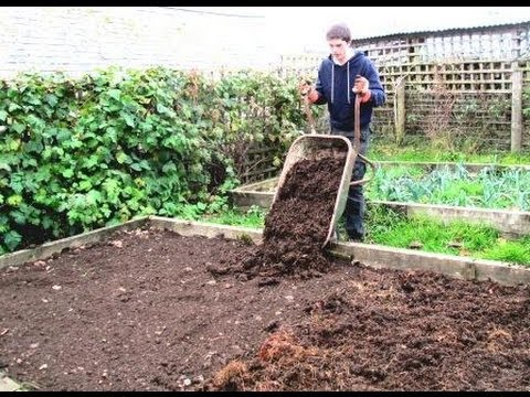 How To Prepare Raised Beds For Growing Vegetables Youtube
