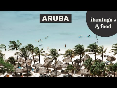 ARUBA TRAVEL GUIDE: discover flamingo beach, restaurants and hotels