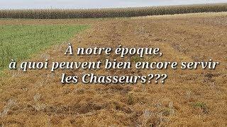 S02, E05: Dégâts de cultures, les ravages des Sangliers...  Battue aux Sangliers dans les Maïs...