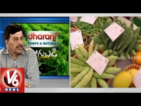 Techniques for Poly House farming - Agriculture prof. Dr Subba Rao - Sagubadi