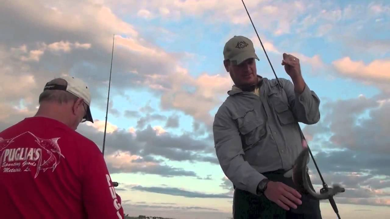 Video: Where, how to catch big autumn speckled trout on ...