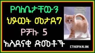 Ethiopikalink