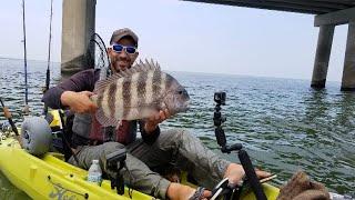 BRIDGE MONSTERS! - Jumbo Sheepshead Fishing & A SURPRISE CATCH!