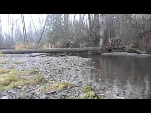 Steelhead Fishing with Jig'n Float HD Green River 10-18-2011 DFC