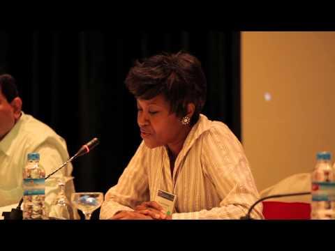 Clean Cooking Forum 2013: Susan Kamau