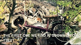 Bikes in barns! rescuing several rare 1960's - 70's drag bicycles from a salvage yard