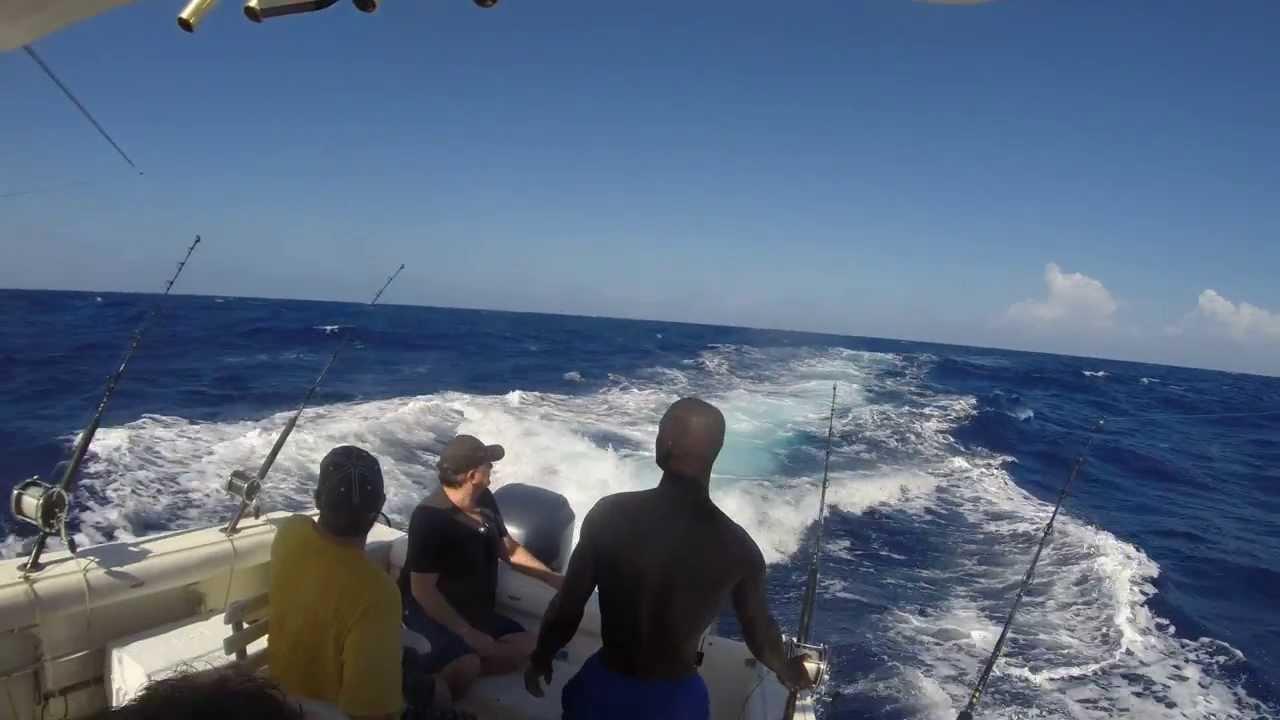 Deep sea fishing in montego bay jamaica 2014 80ilb blue for Deep sea fishing jamaica