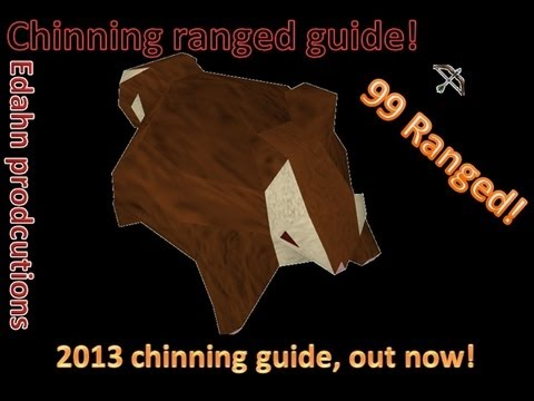 [RS] Chinning guide ranged/defence | Abyss | 320k+ exp per hour | [2013|EoC|Doodstil]