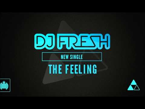 Dj Fresh Ft Ravaughn The Feeling  [lyric In Desc] video
