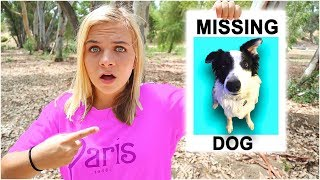 Our PUPPY Is MISSING!  // SoCassie