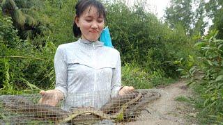 Thăm  bẫy  rắn  cùng  vợ  và  cái  kết ko tưởng