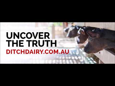 Ditch Dairy
