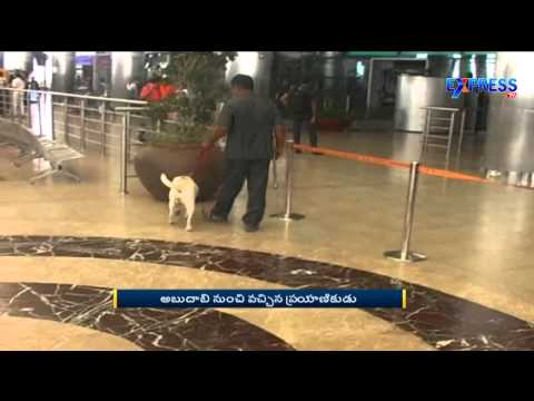 2Kgs Gold Seized at Shamshabad Airport From a Passenger of Abu Dhabi | Express TV