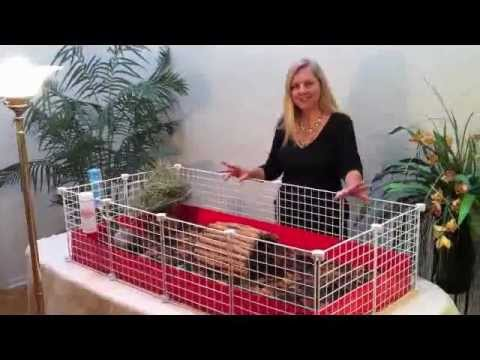 Guinea pig cages fleece flippers an introduction for Making a c c cage