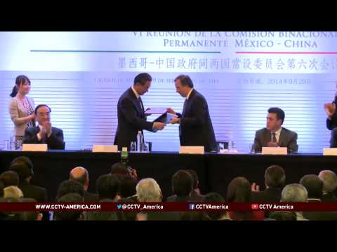 Chinese Foreign Minister Wang Yi met with his Mexican counterpart