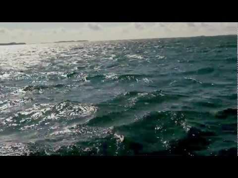Aino Venna - War Song video