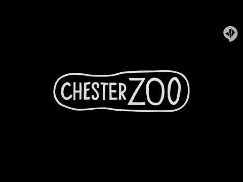 3D fly-through of Islands at Chester Zoo - Opens Spring 2015