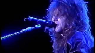 Bon Jovi - Never Say Goodbye (acoustic / Santiago 1990)
