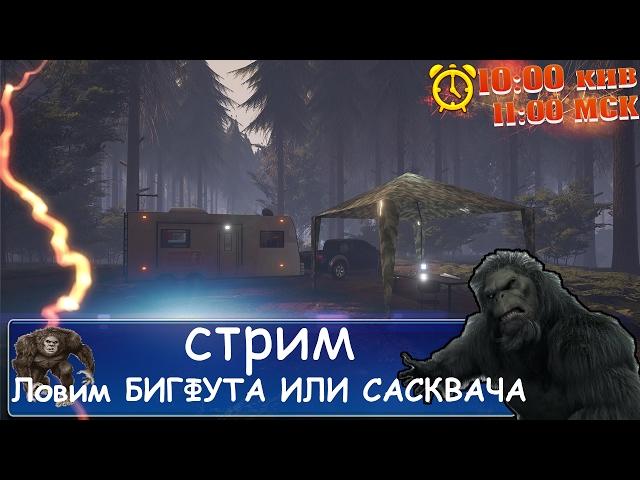 Руководство запуска: Finding Bigfoot по сети