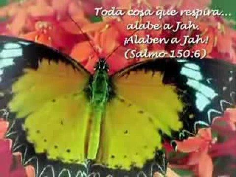 JEHOVA ES NUESTRO REFUGIO