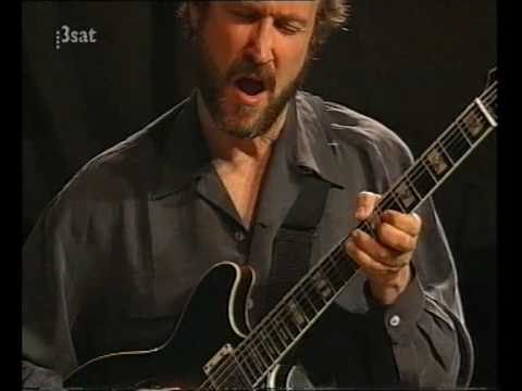John Scofield - Since You Asked