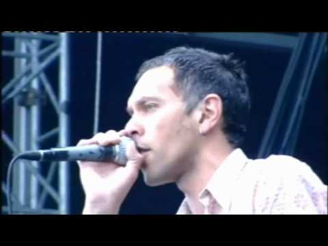 Shed Seven -