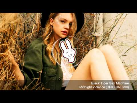 Black Tiger Sex Machine - Midnight Violence (original Mix) - Free Download - Banger Bunny video