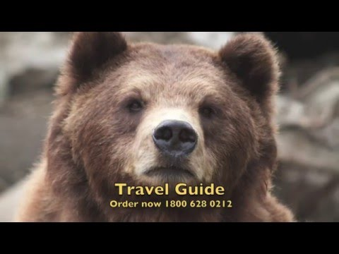 Travel Guide Trip Planner-40th Edition