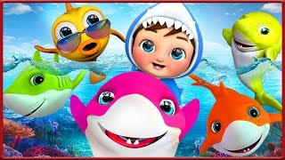 Baby Shark ,Five Little Monkeys , Happy Birthday Song , Bingo Dog Song , Wheels on the Bus [HD]