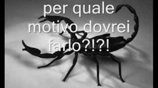 Watch 883 La Rana E Lo Scorpione video