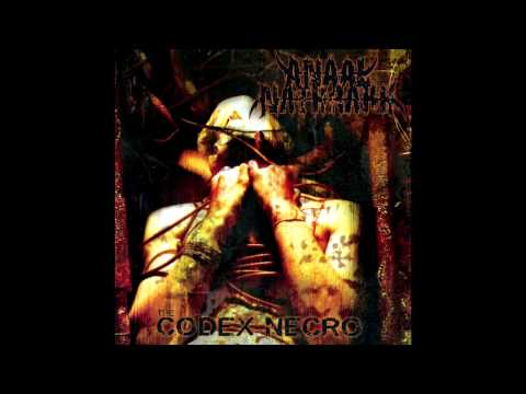 Anaal Nathrakh - Paradigm Shift Annihilation