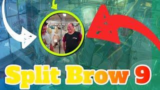 """Vlog - The """"Split Brow 9"""" Pickup"""