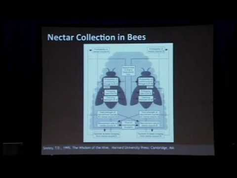 0 James McLurnkin on The Future of Robotics is Swarms: Why a Thousand Robots are Better Than One