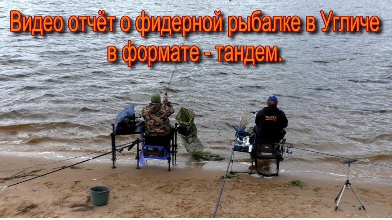 можно ли сейчас ловить рыбу на фидер