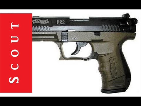 Walther P22 Military Target 22lr Pistol Review - Scout Tactical
