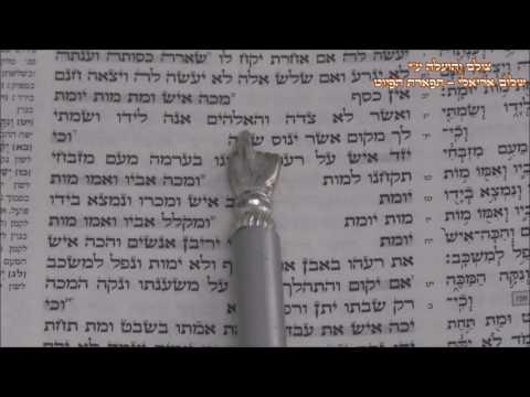 קריאת התורה פרשת משפטים החזן המוסיקאי משה חבושה