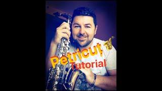 Download Lagu Tutorial saxofo:Țarina de la Abrud Gratis STAFABAND